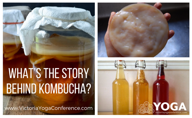 What's the Story Behind Kombucha?